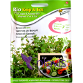 Buzzy Seeds Seminte de Broccoli pentru Germinat eco