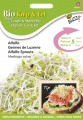Buzzy Seeds Seminte de Lucerna pentru Germinat eco
